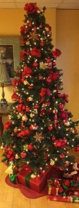 Festive Christmas Trees in beautiful shapes, sizes and colors